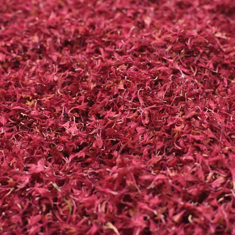 Burgundy Cornflower Petals