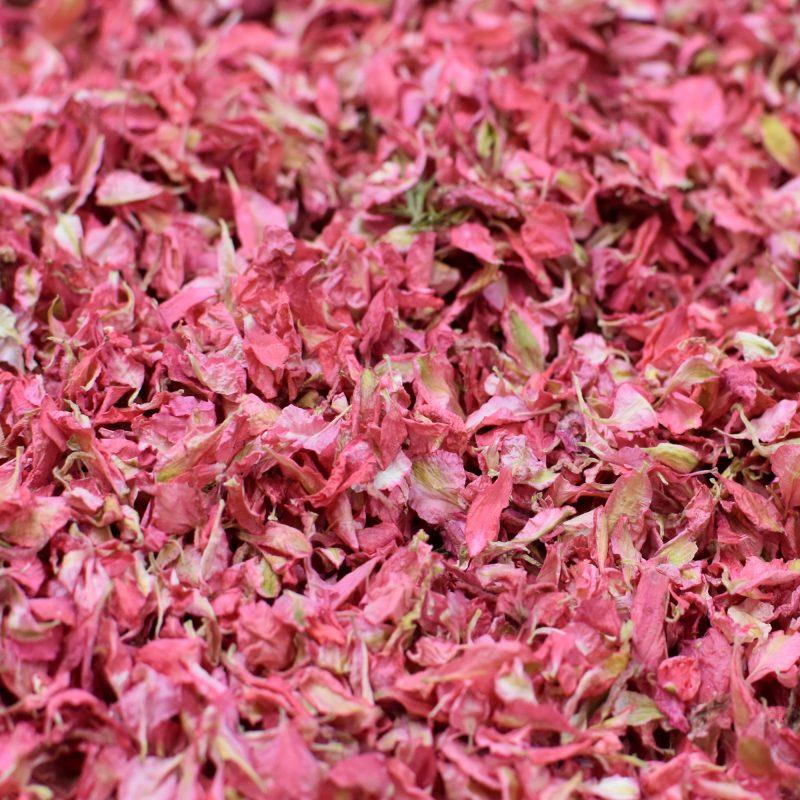 Dark Pink Delphinium Petals