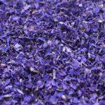 Dark Purple Delphinium Petals