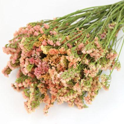 Wholesale Dried Apricot Statice Bunch | Sea Lavender