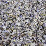 Grey Delphinium Petals