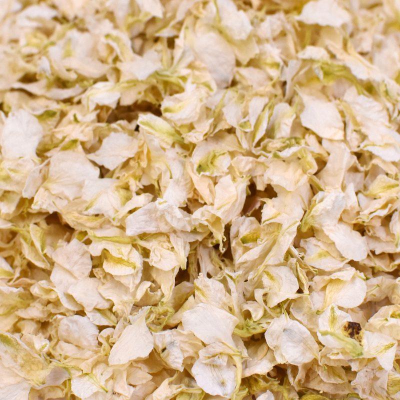 Ivory Delphinium Petals