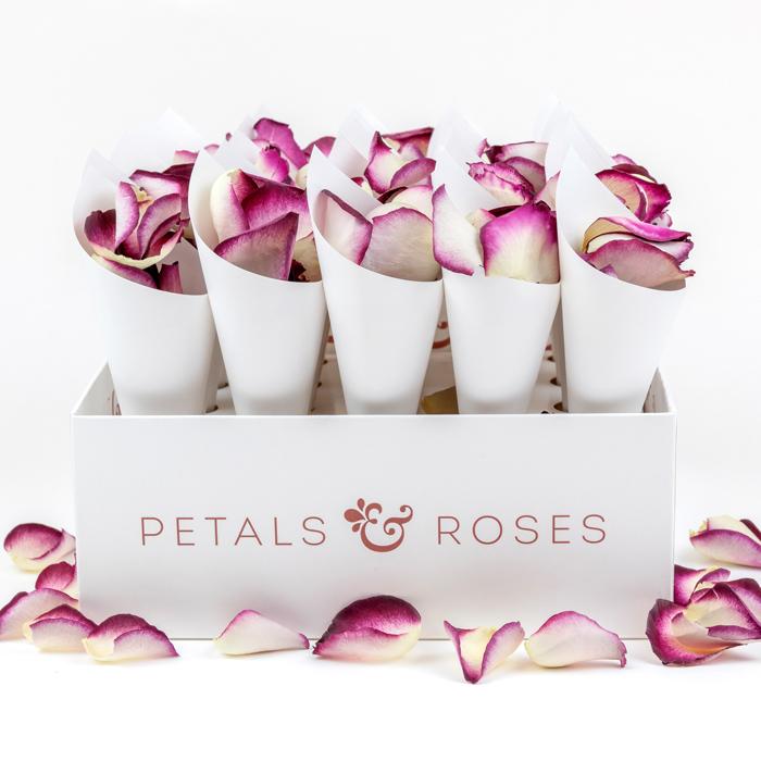 Petals & Roses Cone Box