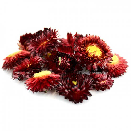 5 Litre Helichrysum Heads