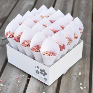 Biodegradable Petal Confetti with Cones and display box