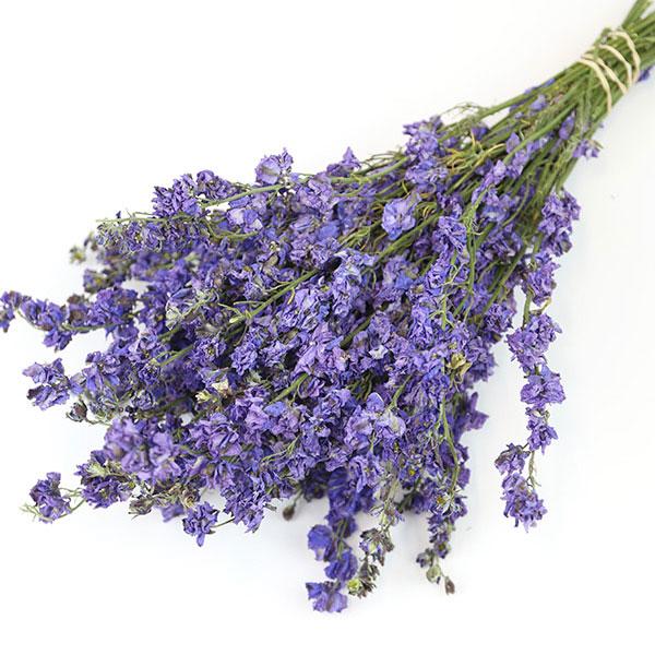 Purple Delphinium Bunch