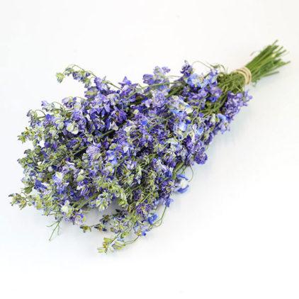 Wholesale Dried Flower Light Blue Delphinium Bunch | Larkspur Dried Flowers